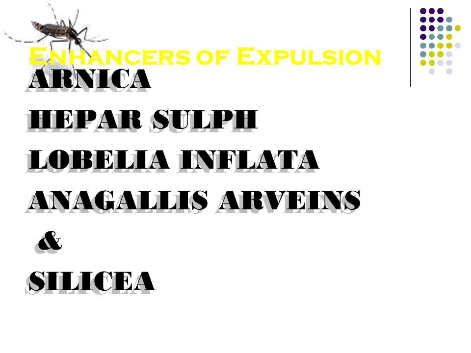 Enhancers of Expulsion ARNICA HEPAR SULPH LOBELIA INFLATA ANAGALLIS ARVEINS & SILICEA ARNICA HEPAR SULPH LOBELIA INFLATA ANAGALLIS ARVEINS & SILICEA