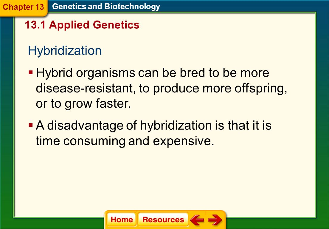 Hybridization Genetics and Biotechnology  Hybrid organisms can be bred to be more disease-resistant, to produce more offspring, or to grow faster.