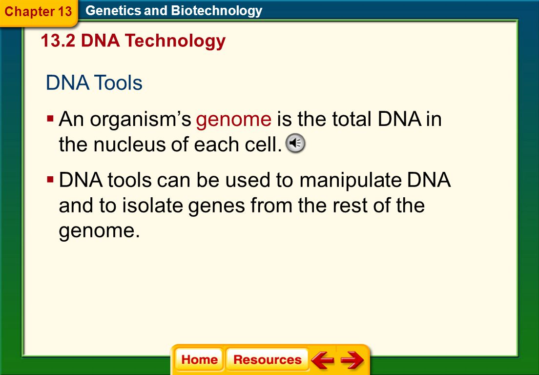 DNA Tools Genetics and Biotechnology  An organism's genome is the total DNA in the nucleus of each cell.