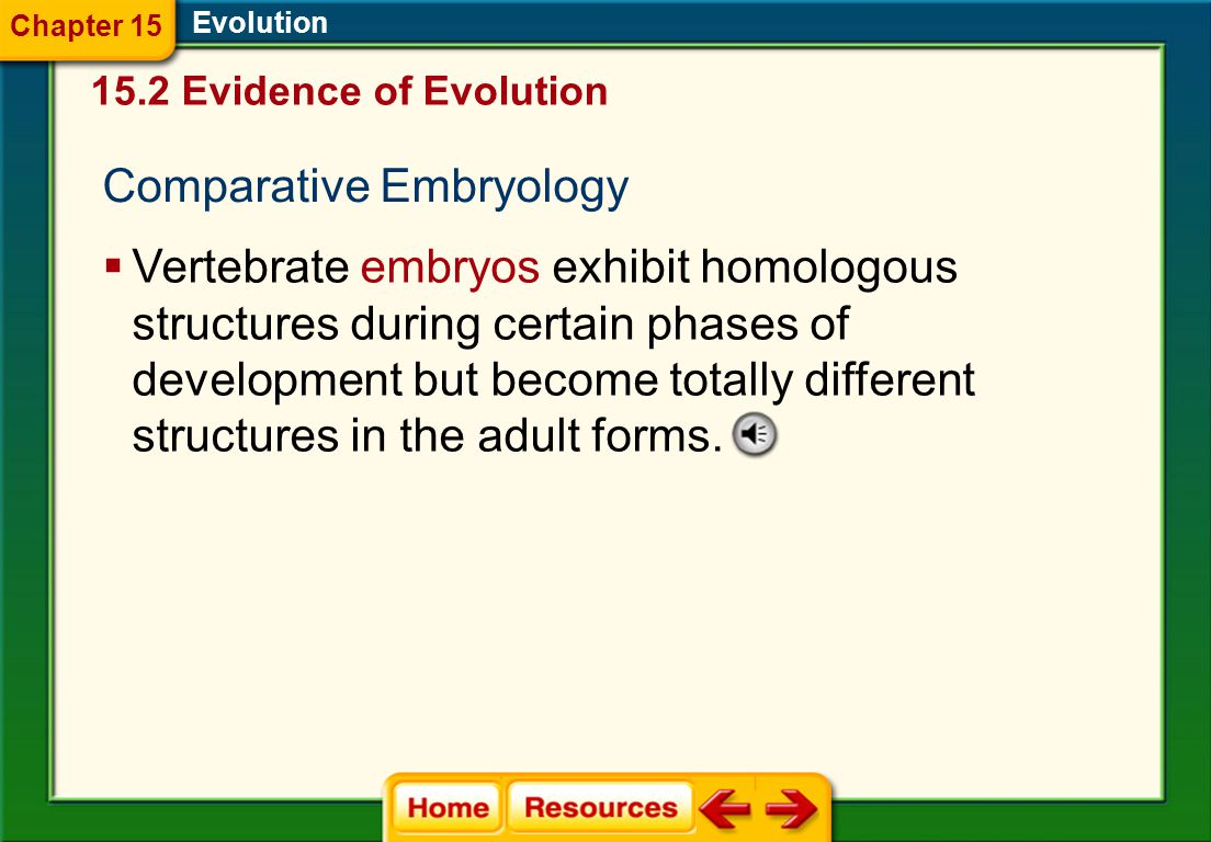 Evolution  Vertebrate embryos exhibit homologous structures during certain phases of development but become totally different structures in the adult forms.