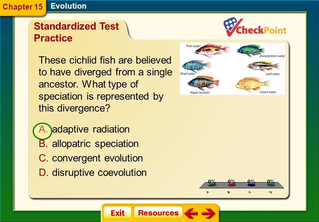 1.A 2.B 3.C 4.D STP 6 Evolution Chapter 15 Standardized Test Practice A.