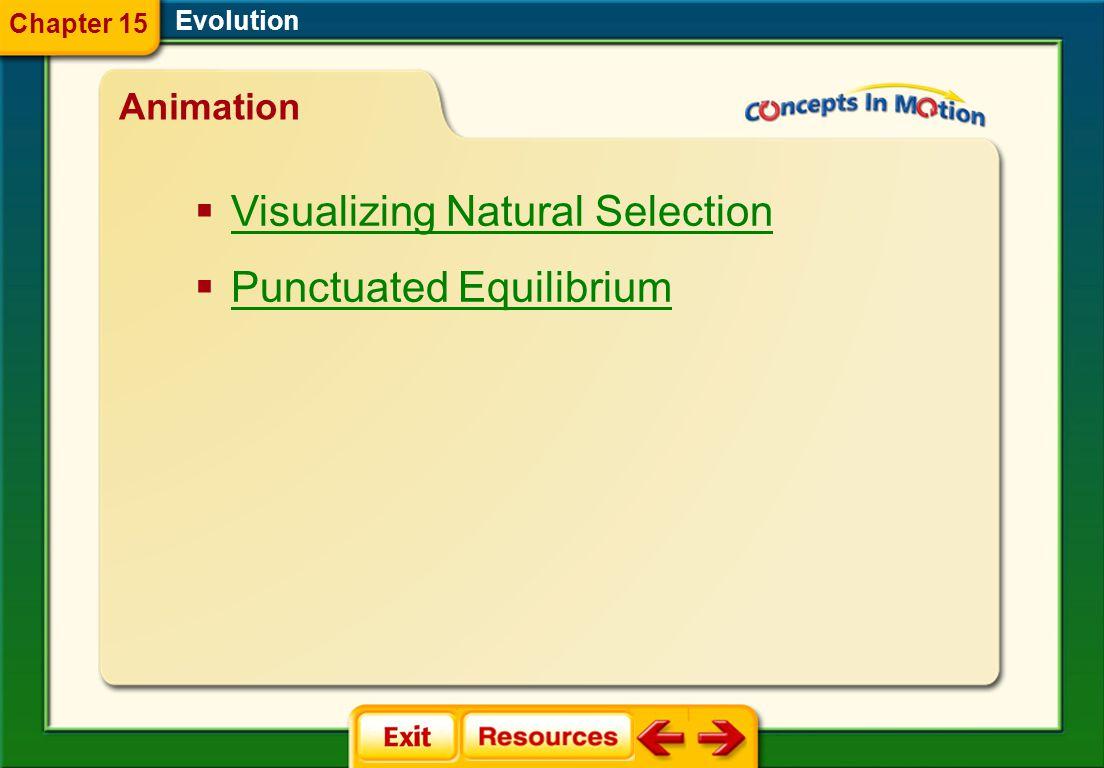 Evolution Animation  Visualizing Natural Selection Visualizing Natural Selection  Punctuated Equilibrium Punctuated Equilibrium