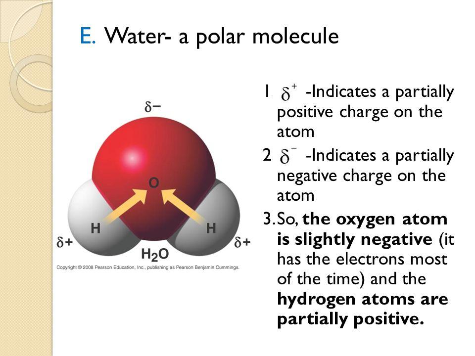 E. Water- a polar molecule 1.-Indicates a partially positive charge on the atom 2.-Indicates a partially negative charge on the atom 3.So, the oxygen