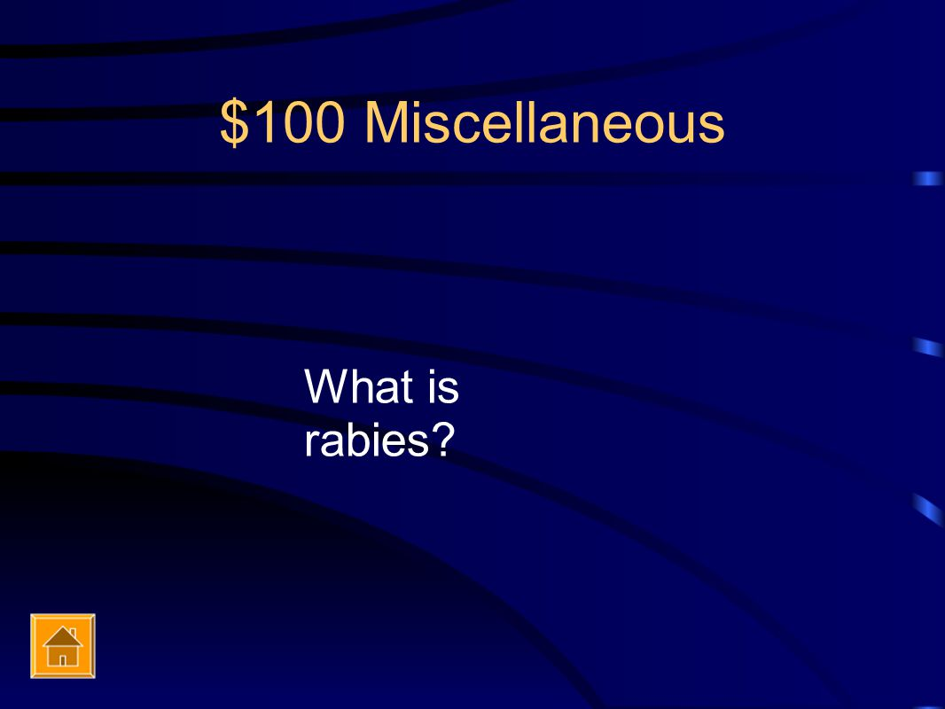 $100 Miscellaneous What is rabies?