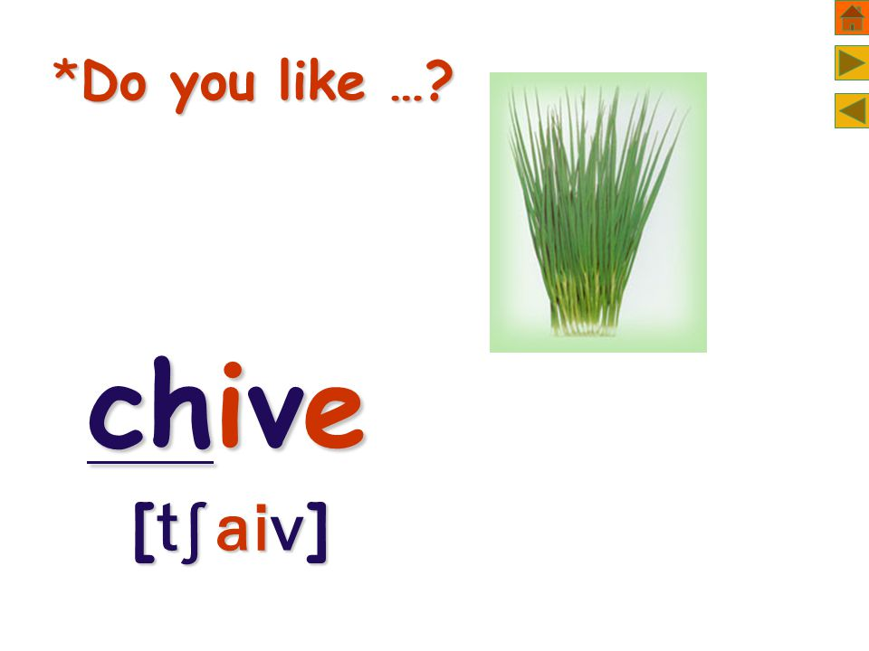 *Do you like … chive [  ]