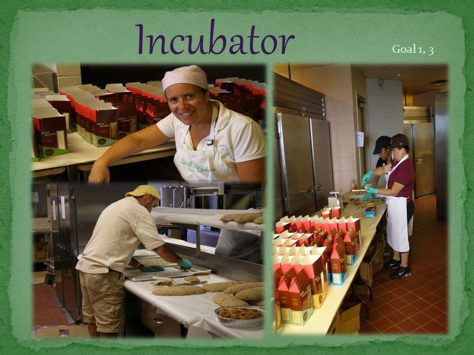 Incubator Goal 1, 3