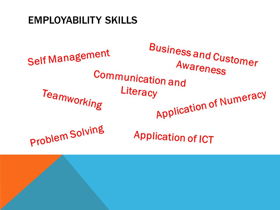 EMPLOYABILITY SKILLS Self Management Teamworking Problem Solving Business and Customer Awareness Communication and Literacy Application of Numeracy Application of ICT