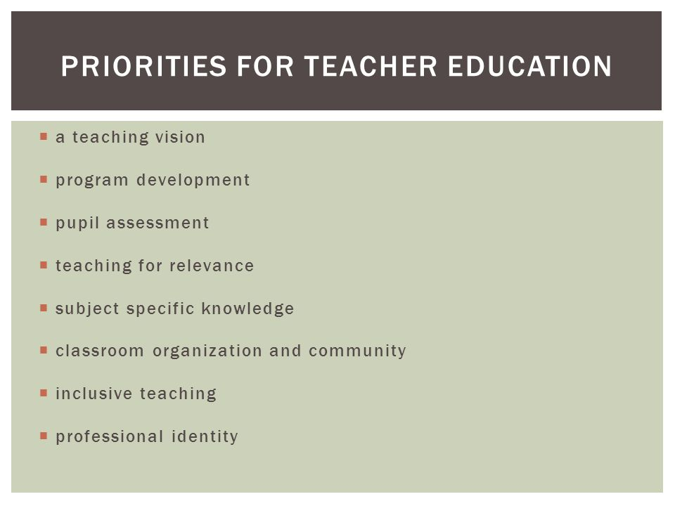  a teaching vision  program development  pupil assessment  teaching for relevance  subject specific knowledge  classroom organization and community  inclusive teaching  professional identity PRIORITIES FOR TEACHER EDUCATION