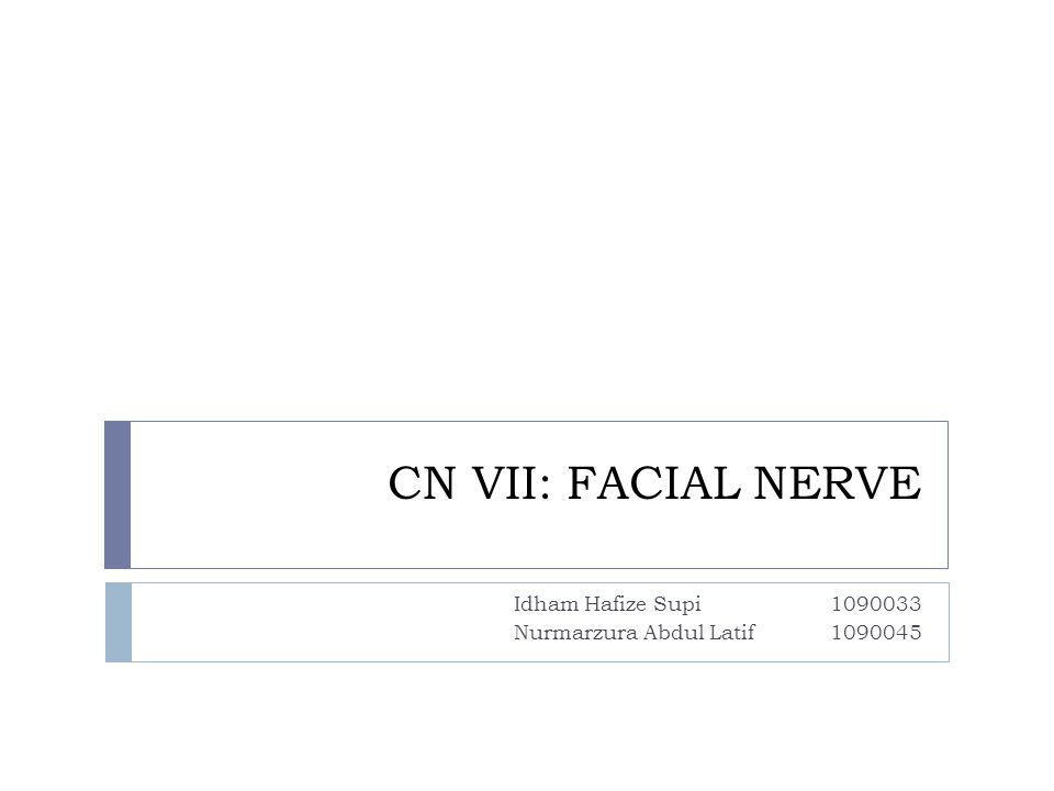 Introduction  The facial nerve is the seventh cranial nerve, or simply cranial nerve VII.