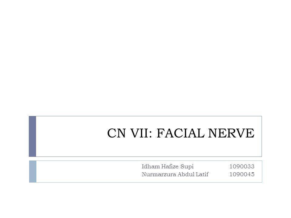CN VII: FACIAL NERVE Idham Hafize Supi1090033 Nurmarzura Abdul Latif1090045