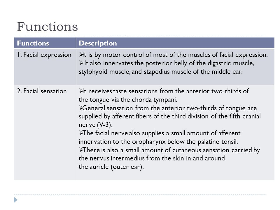 Functions Description 1. Facial expression  It is by motor control of most of the muscles of facial expression.  It also innervates the posterior be