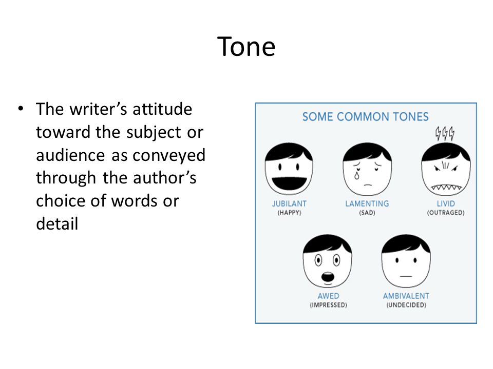 Tone The writer's attitude toward the subject or audience as conveyed through the author's choice of words or detail