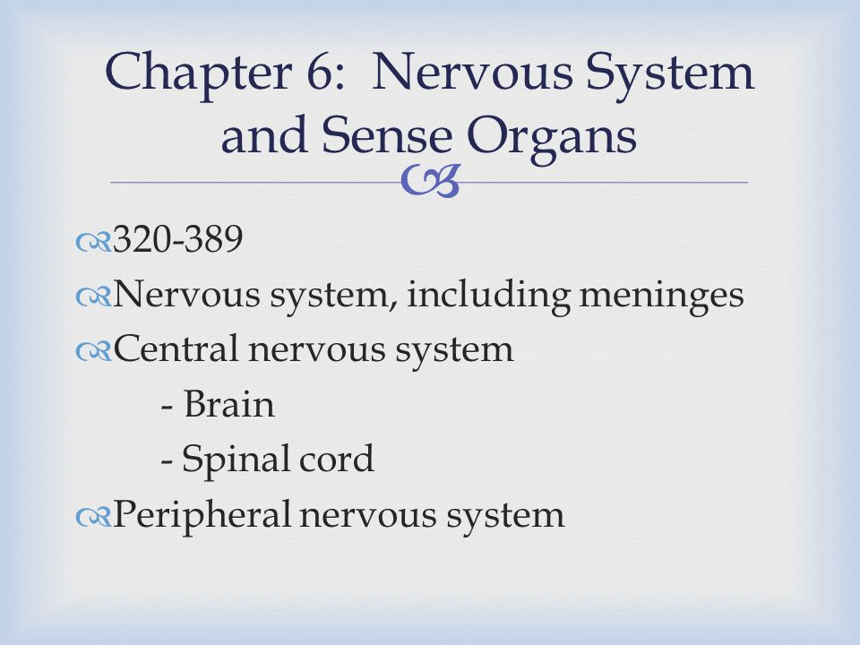   320-389  Nervous system, including meninges  Central nervous system - Brain - Spinal cord  Peripheral nervous system Chapter 6: Nervous System