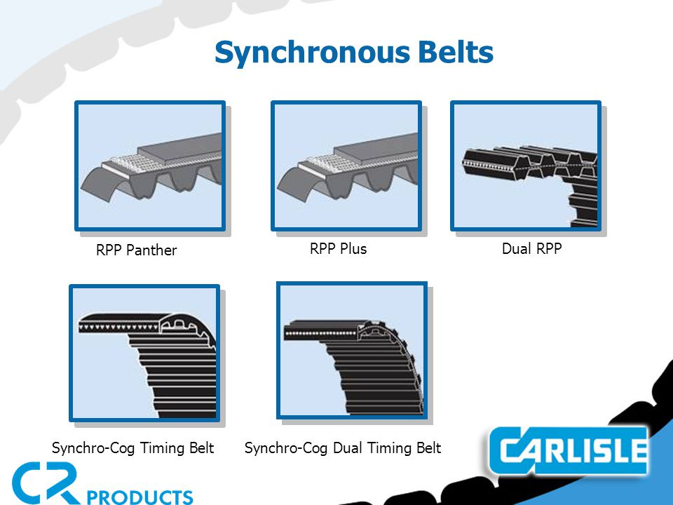 Synchronous Belts RPP Panther RPP Plus Dual RPP Synchro-Cog Timing BeltSynchro-Cog Dual Timing Belt