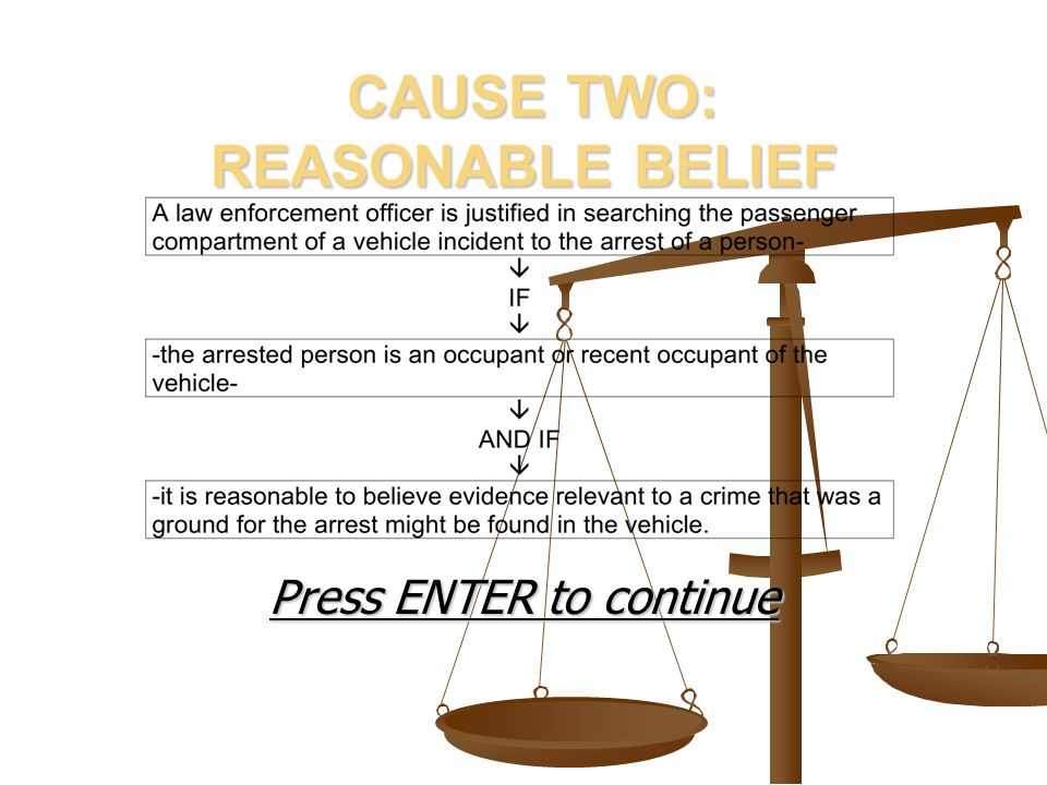 CAUSE TWO: REASONABLE BELIEF CAUSE TWO: REASONABLE BELIEF Press ENTER to continue