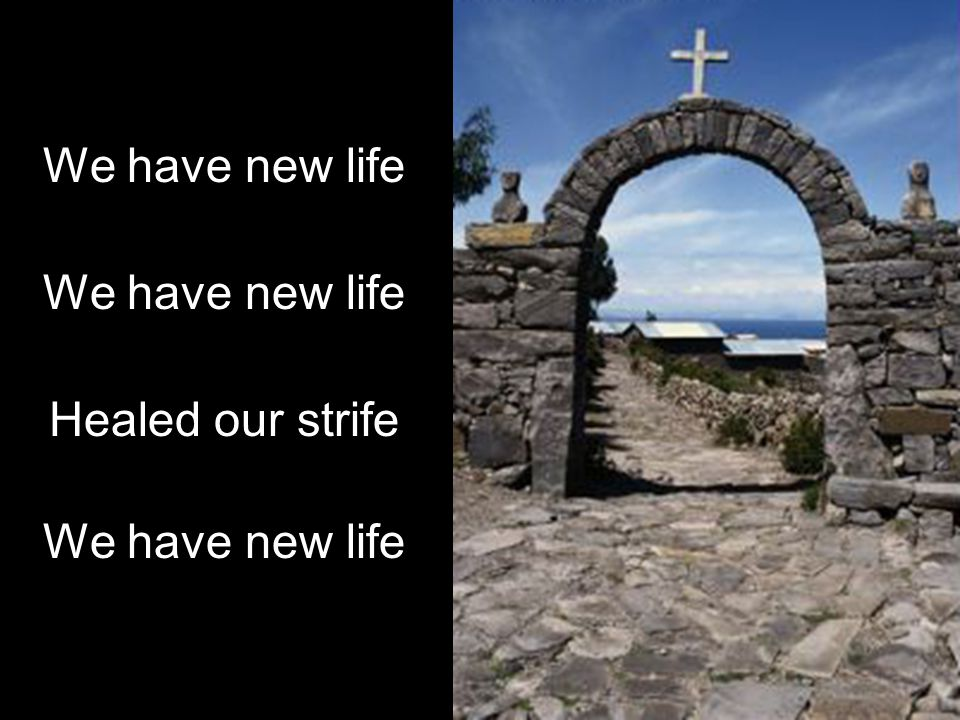 We have new life Healed our strife We have new life