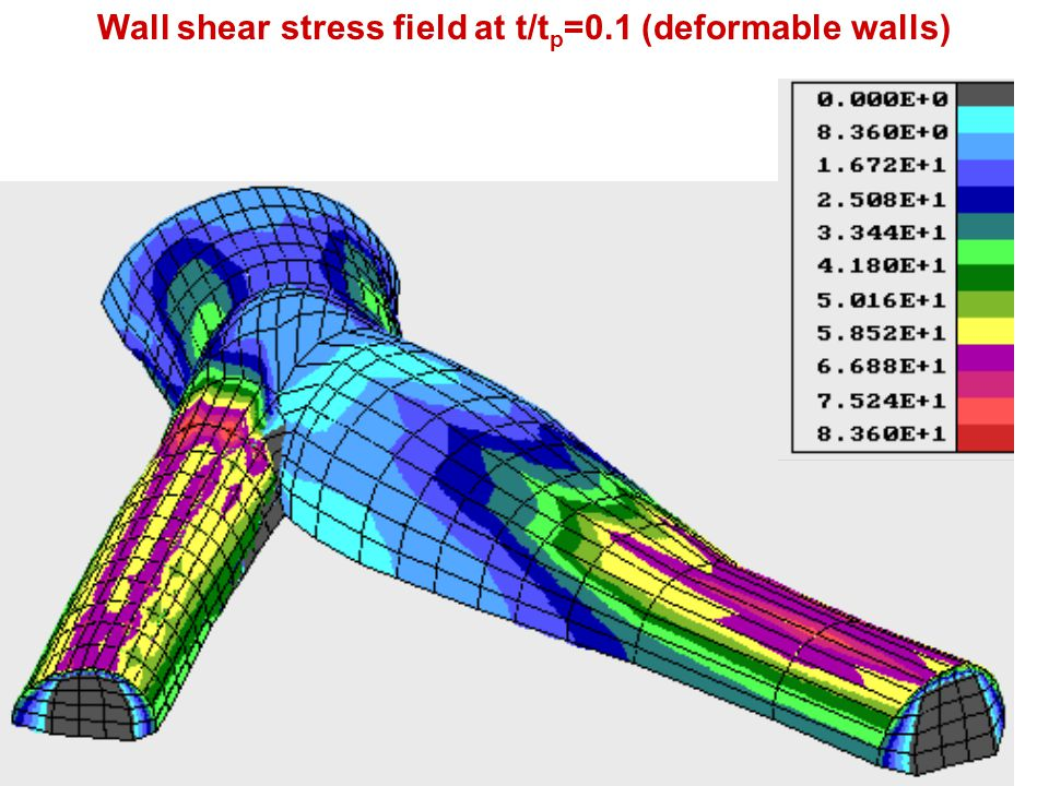 Wall shear stress field at t/t p =0.1 (deformable walls)