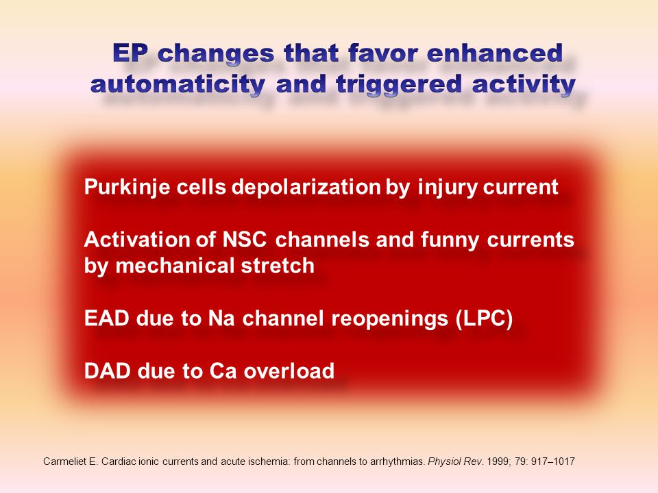 Purkinje cells depolarization by injury current Activation of NSC channels and funny currents by mechanical stretch EAD due to Na channel reopenings (LPC) DAD due to Ca overload Purkinje cells depolarization by injury current Activation of NSC channels and funny currents by mechanical stretch EAD due to Na channel reopenings (LPC) DAD due to Ca overload Carmeliet E.