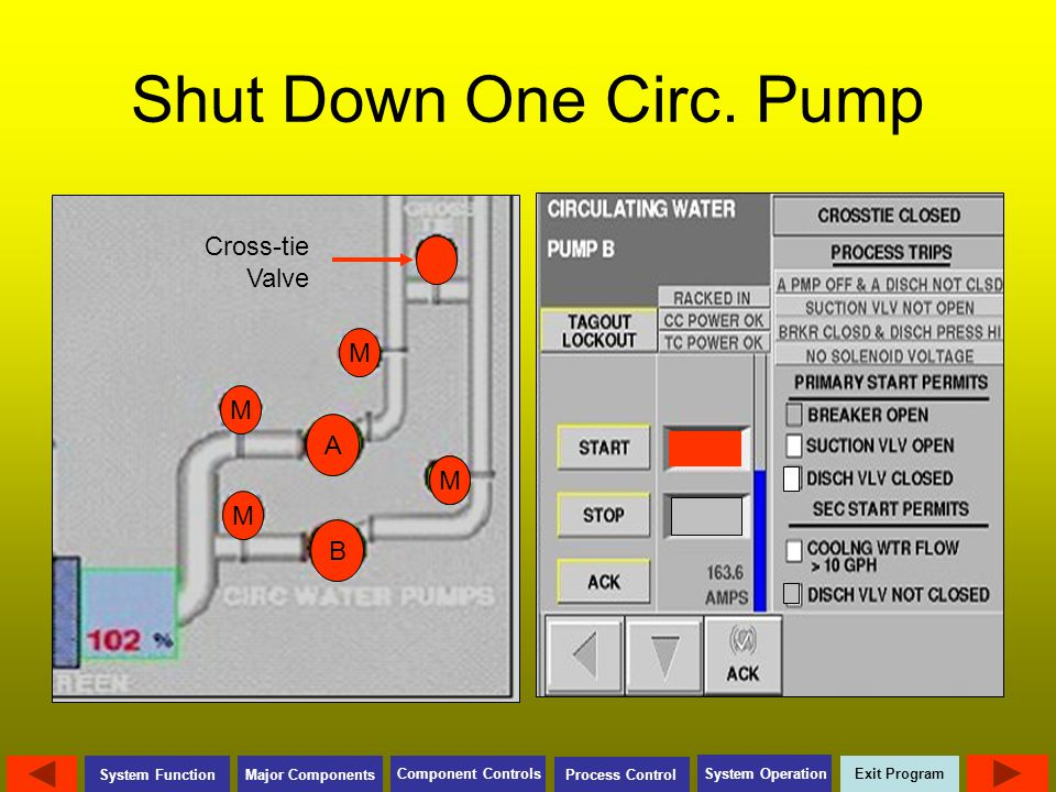 Exit Program Major Components Component Controls Process Control System Operation System Function Shut Down One Circ. Pump M M M M A Cross-tie Valve B
