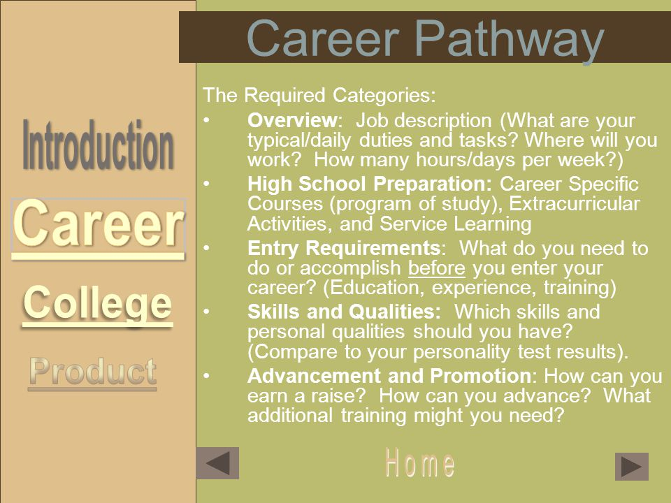 Career Pathway The Required Categories: Overview: Job description (What are your typical/daily duties and tasks.