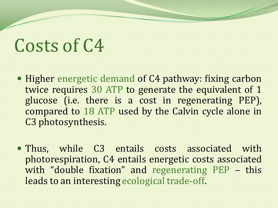 Trade-Offs Different environmental conditions tip the balances of costs and benefits in favour of C4 or C3 photosynthesis.