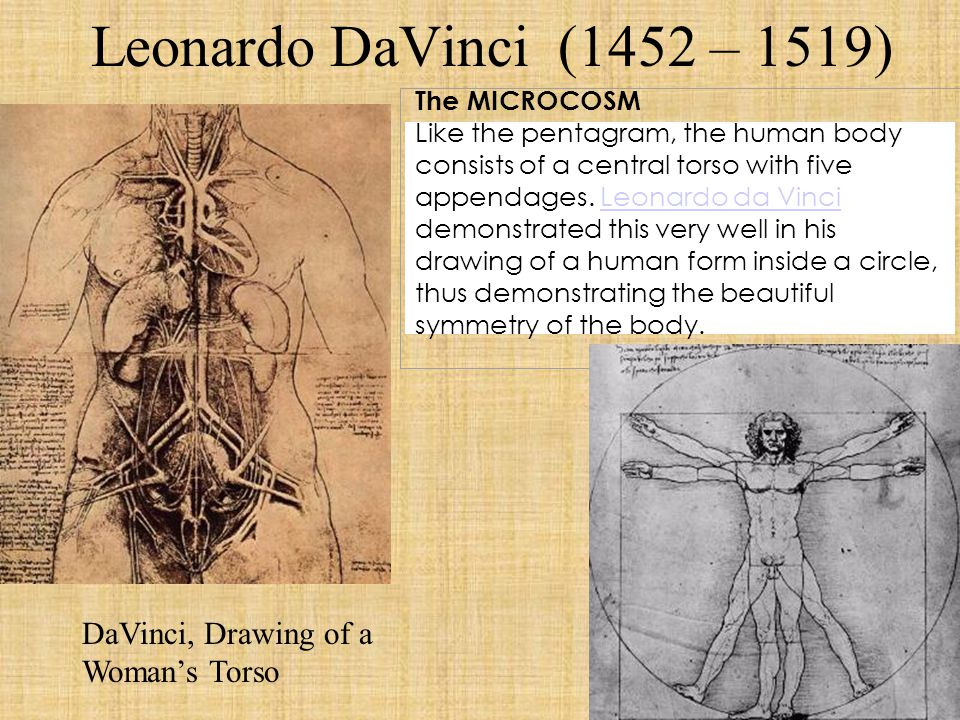 Leonardo DaVinci (1452 – 1519) DaVinci, Drawing of a Woman's Torso The MICROCOSM Like the pentagram, the human body consists of a central torso with f