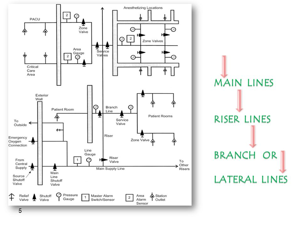 5 MAIN LINES RISER LINES BRANCH OR LATERAL LINES