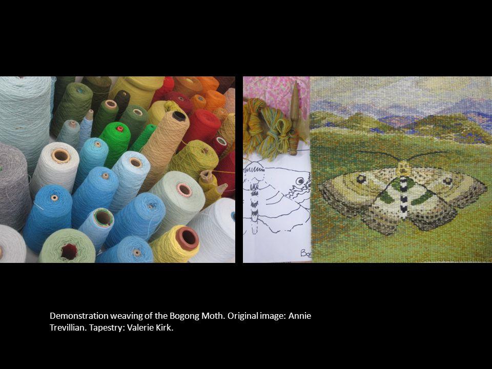 Demonstration weaving of the Bogong Moth. Original image: Annie Trevillian. Tapestry: Valerie Kirk.