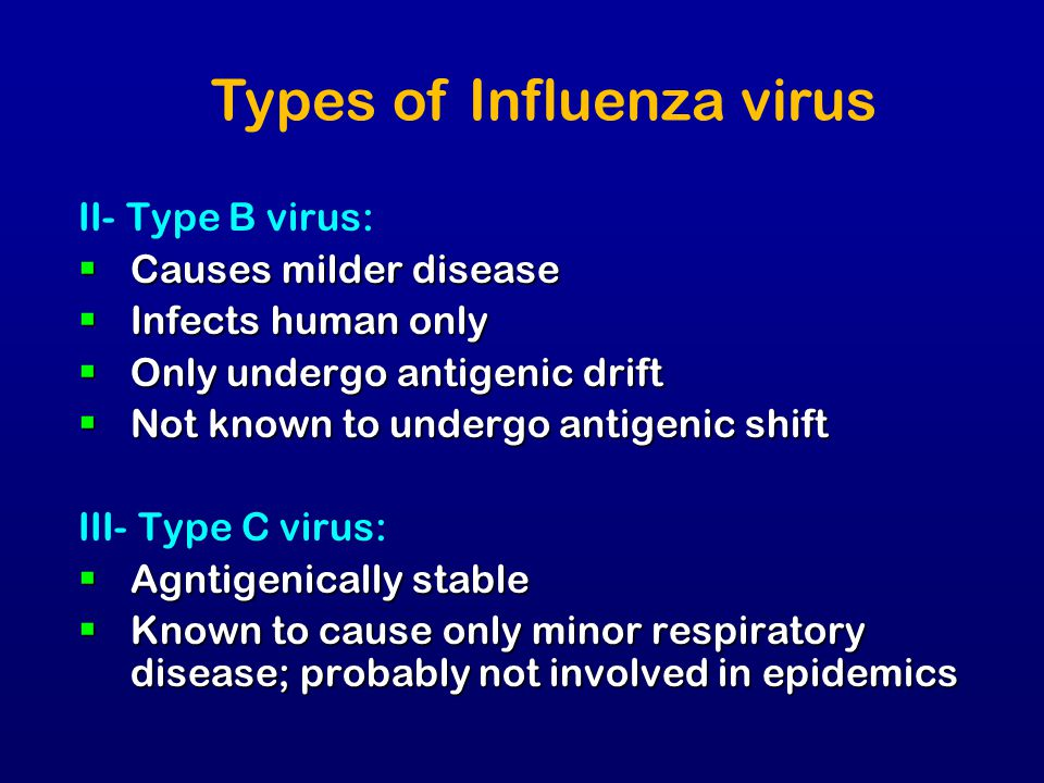II- Type B virus:  Causes milder disease  Infects human only  Only undergo antigenic drift  Not known to undergo antigenic shift III- Type C virus