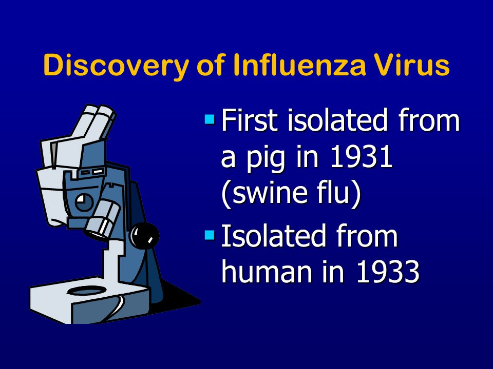 Influenza Vaccines Whole virus vaccines: inactivated forms of virus with the predicted HA, are grown in embryonated eggs Whole virus vaccines: inactivated forms of virus with the predicted HA, are grown in embryonated eggs Subunit vaccine: uses both HA and NA subunits extracted from recomibinant virus forms Subunit vaccine: uses both HA and NA subunits extracted from recomibinant virus forms Split-virus vaccines: purified HA (lessens the side-effects) Split-virus vaccines: purified HA (lessens the side-effects) Recommended for health care workers, elderly/ people in nursing homes, asthmatics, chronic lung disease patients, some pregnant women, and anyone who is susceptible to infection Recommended for health care workers, elderly/ people in nursing homes, asthmatics, chronic lung disease patients, some pregnant women, and anyone who is susceptible to infection
