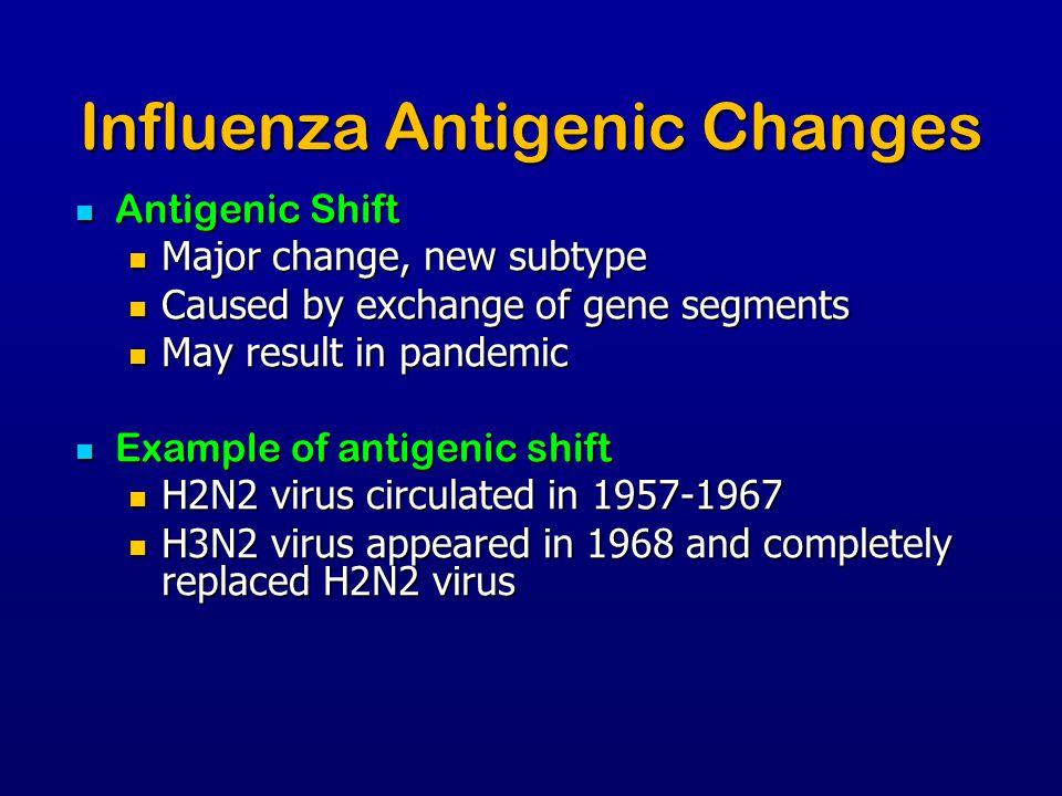 Influenza Antigenic Changes Antigenic Shift Antigenic Shift Major change, new subtype Major change, new subtype Caused by exchange of gene segments Ca