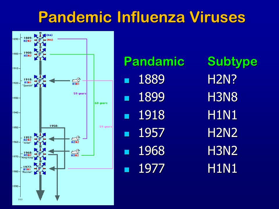 Pandemic Influenza Viruses PandamicSubtype 1889H2N? 1889H2N? 1899H3N8 1899H3N8 1918H1N1 1918H1N1 1957H2N2 1957H2N2 1968H3N2 1968H3N2 1977H1N1 1977H1N1