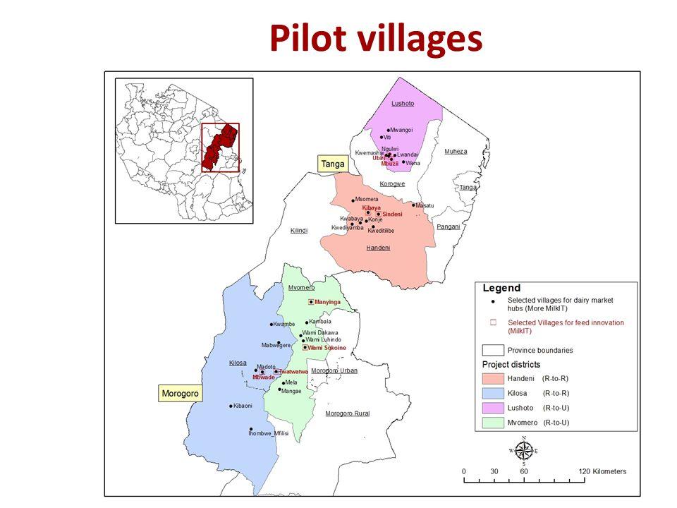 MoreMilkIT Workplan for 2013/14