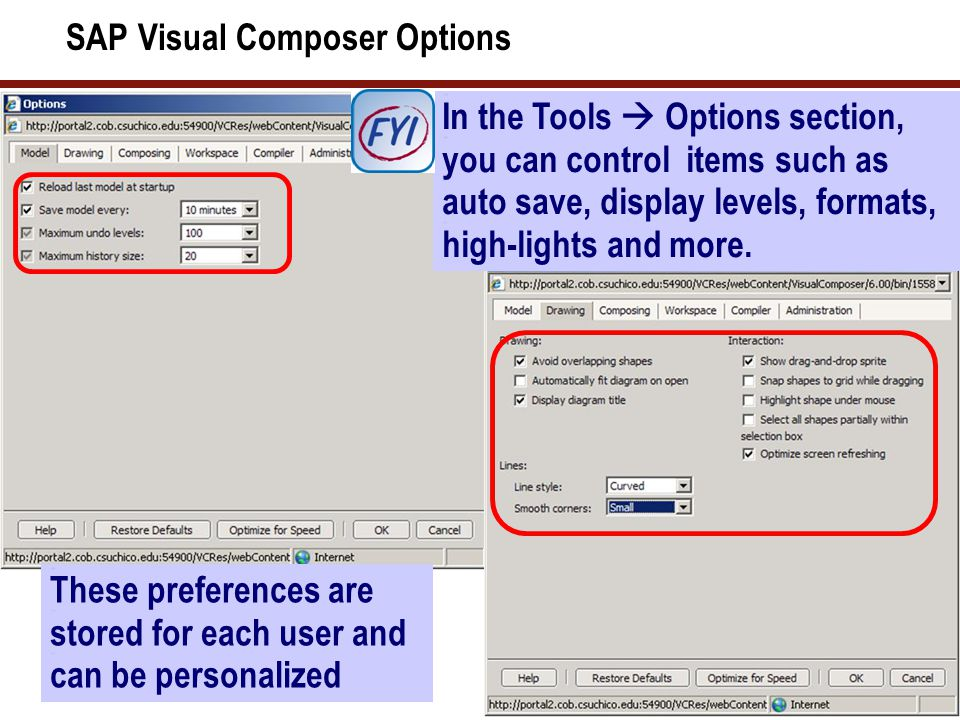 SAP Visual Composer Options In the Tools  Options section, you can control items such as auto save, display levels, formats, high-lights and more. Th