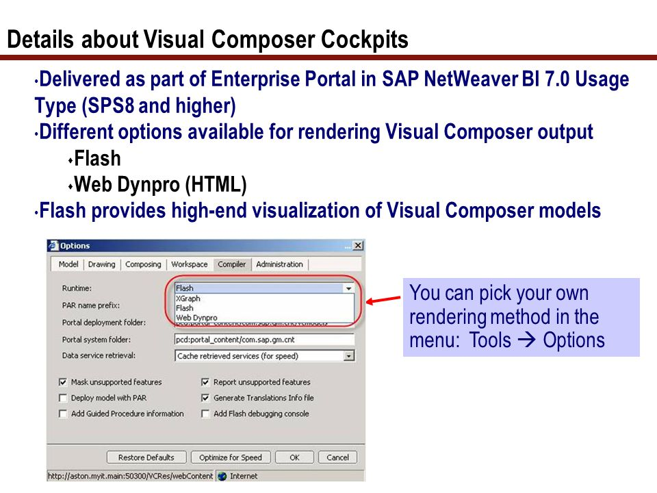 8 Details about Visual Composer Cockpits Delivered as part of Enterprise Portal in SAP NetWeaver BI 7.0 Usage Type (SPS8 and higher) Different options