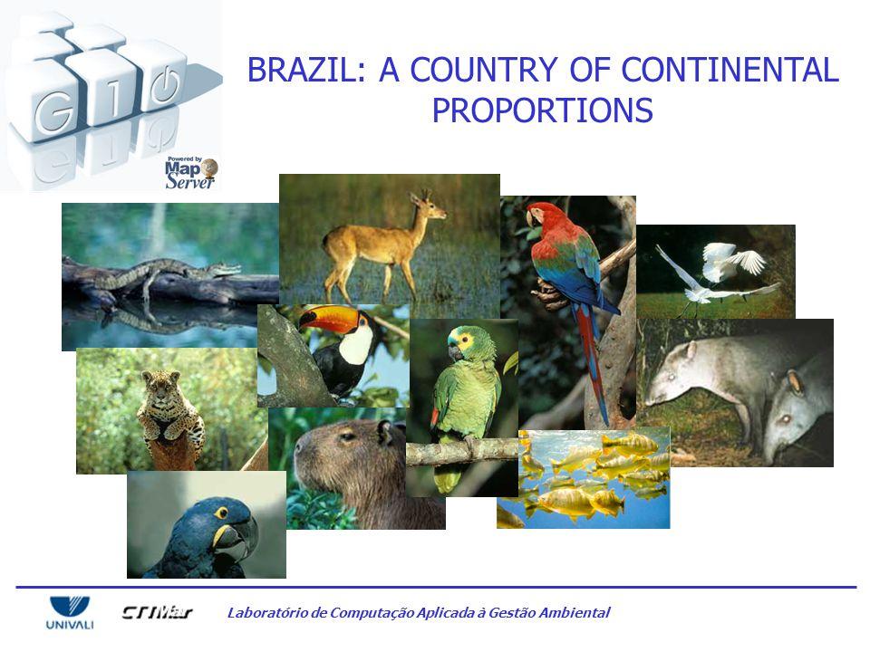 Laboratório de Computação Aplicada à Gestão Ambiental BRAZIL: A COUNTRY OF CONTINENTAL PROPORTIONS