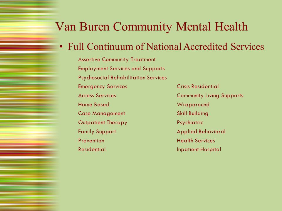 Van Buren Community Mental Health For the Community Innovative Services to Meet Community Needs – First in state to pilot blended funding model to serve youth and families.