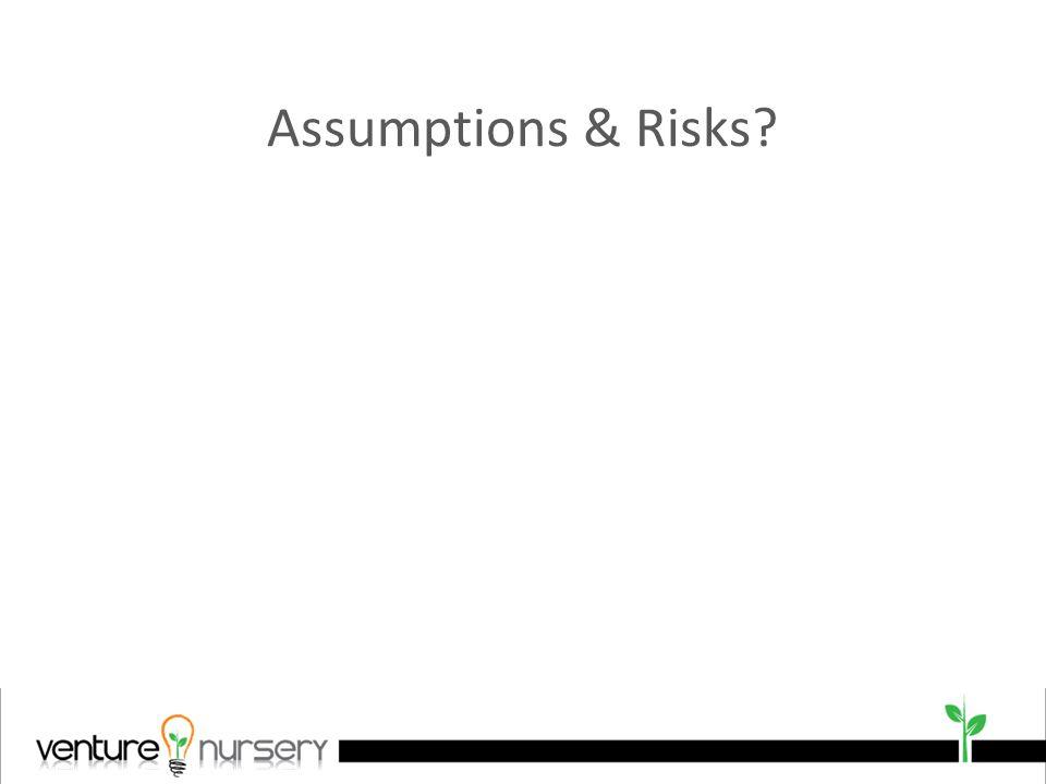 Assumptions & Risks?