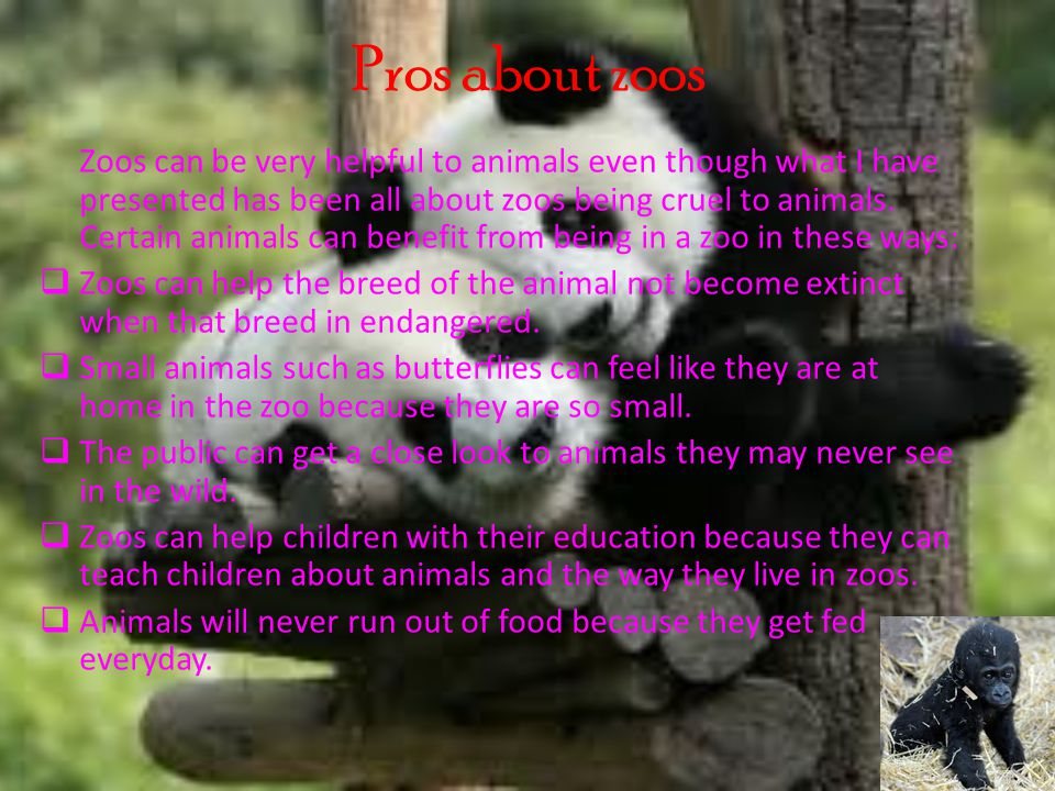 Cons about zoos As well as all the pros about zoos, there are some bad things that zoos can do to animals.
