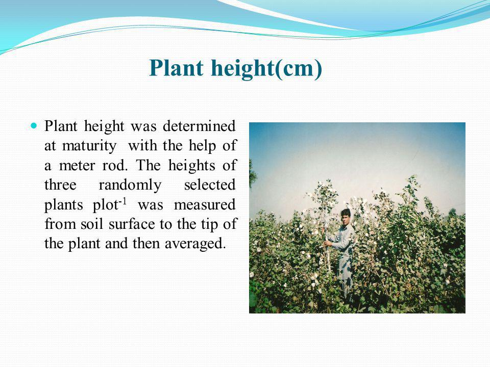 Plant height(cm) Plant height was determined at maturity with the help of a meter rod.