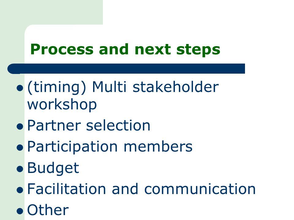 Process and next steps (timing) Multi stakeholder workshop Partner selection Participation members Budget Facilitation and communication Other