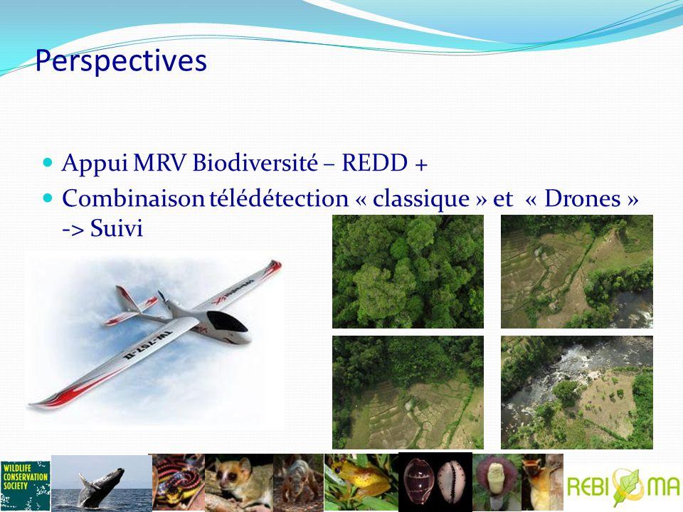 Perspectives Appui MRV Biodiversité – REDD + Combinaison télédétection « classique » et « Drones » -> Suivi