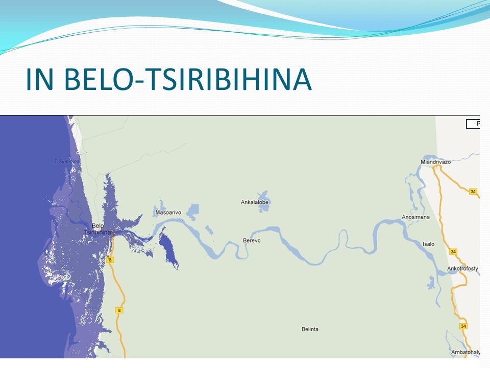 IN BELO-TSIRIBIHINA