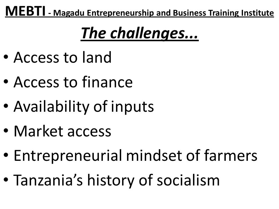 MEBTI - Magadu Entrepreneurship and Business Training Institute The challenges...