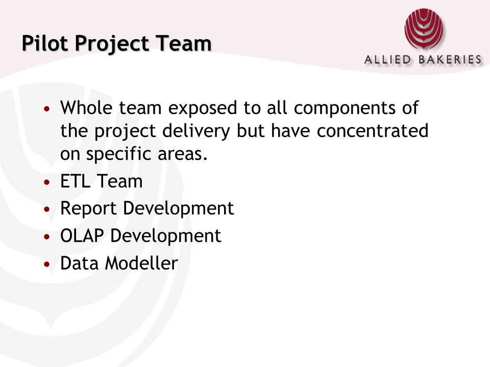 Pilot Project Team Whole team exposed to all components of the project delivery but have concentrated on specific areas. ETL Team Report Development O