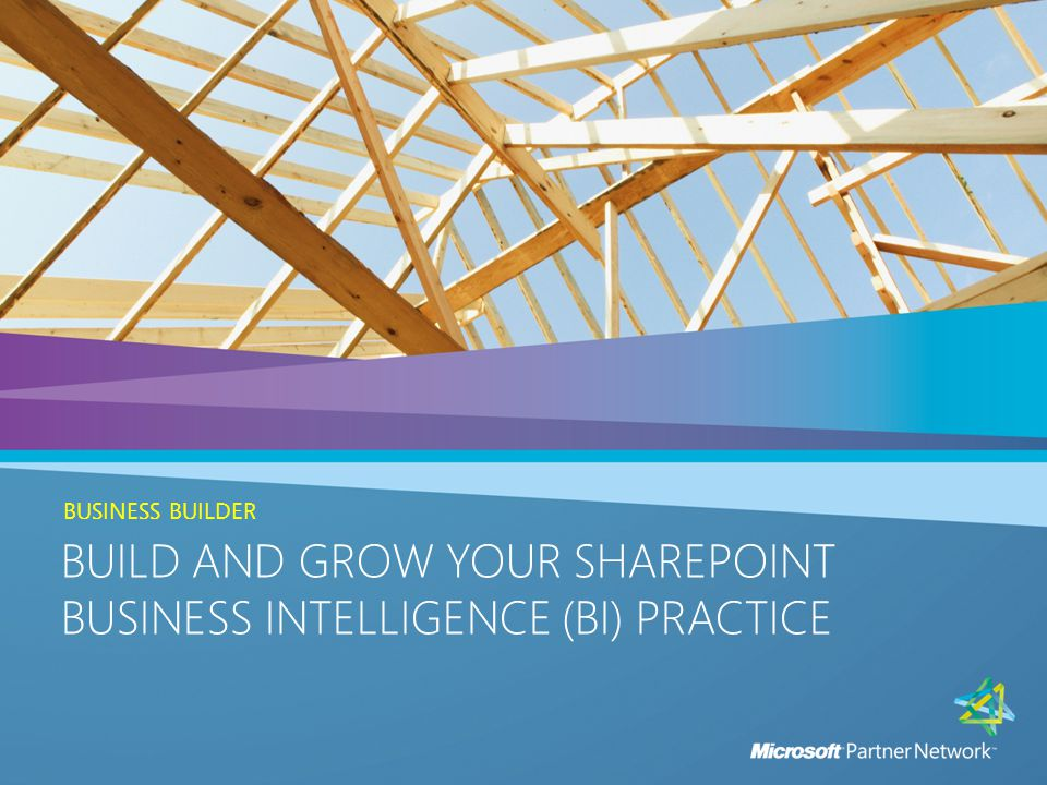 BUILD AND GROW YOUR SHAREPOINT BUSINESS INTELLIGENCE (BI) PRACTICE INTRODUCTION BUILD AND GROW YOUR SHAREPOINT BUSINESS INTELLIGENCE (BI) PRACTICE PLAY THREE: DEVELOP AND ANALYZE YOUR SALES STRATEGY Build a SharePoint BI solutions-based sales team:  Review, Develop, and Analyze Your Sales Strategy  Create Sales Training and Development Plans  Microsoft Incentives 12
