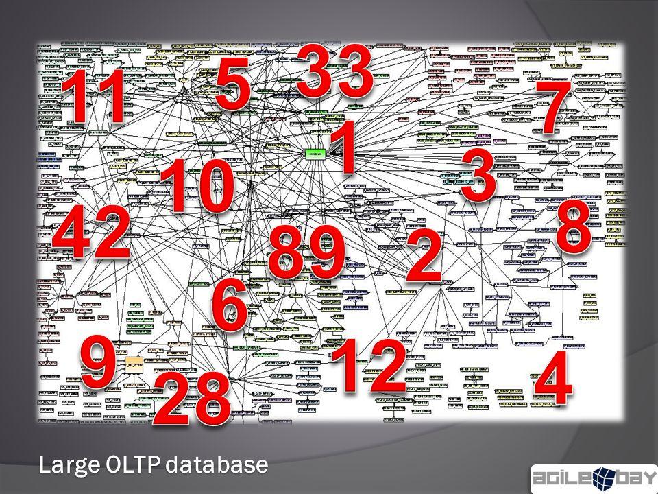 Large OLTP database