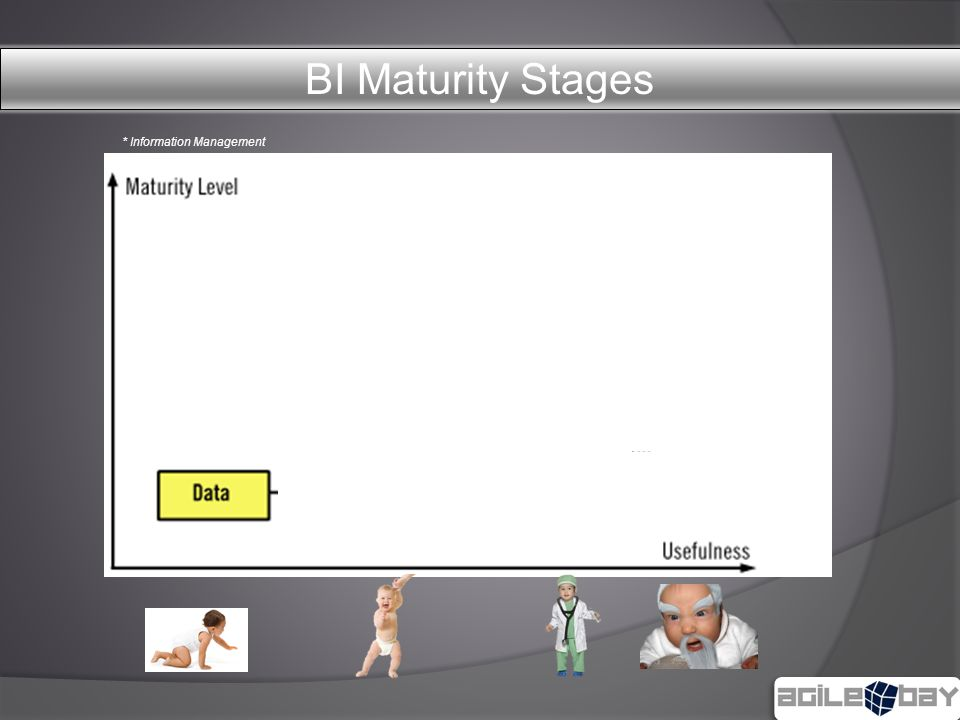* Information Management BI Maturity Stages