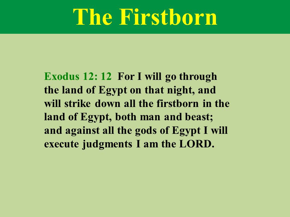 The Firstborn Exodus 12: 12 For I will go through the land of Egypt on that night, and will strike down all the firstborn in the land of Egypt, both man and beast; and against all the gods of Egypt I will execute judgments I am the LORD.