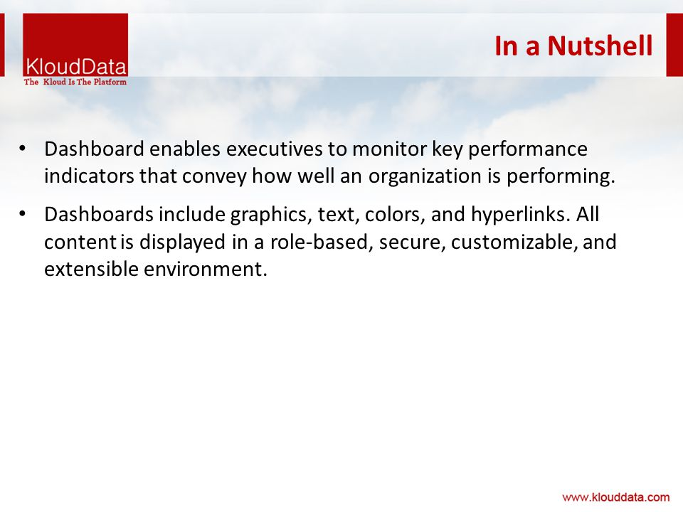 In a Nutshell Dashboard enables executives to monitor key performance indicators that convey how well an organization is performing.